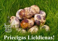 12+ labi iemesli meklēt un lietot labas olas